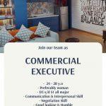Flayer job vacancy Commercial Executive